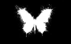 Papillon - art