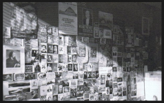 Mur du bureau de Janine Dakyns