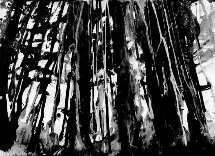 Um Mitternacht - Forêt de nuit