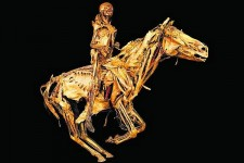 Le Cavalier de l'Apocalypse écorché - Honoré Fragonard