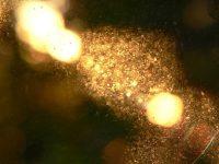 Awen ou le faiseur de lumière