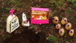pommes de terre - Follain