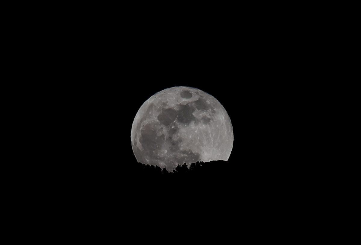 Nuit précieuse - Photo de la pleine lune par Sandra Andrea Papot